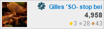 profile for Gilles at Software Recommendations
